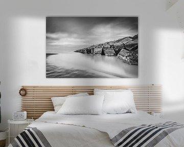 Scheveningen Harbour van Tom Roeleveld