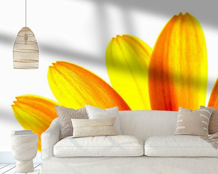 Sfeerimpressie behang: Gele margriet bloemblaadjes macro van Brian Raggatt