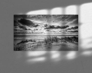 zonsondergang bij de duinen van Martijn Kort