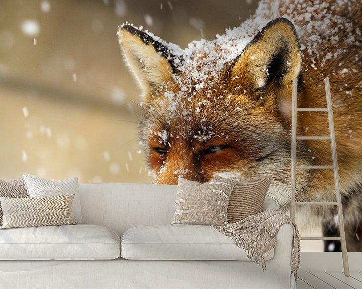Sfeerimpressie behang: Vos in de sneeuw van Menno Schaefer