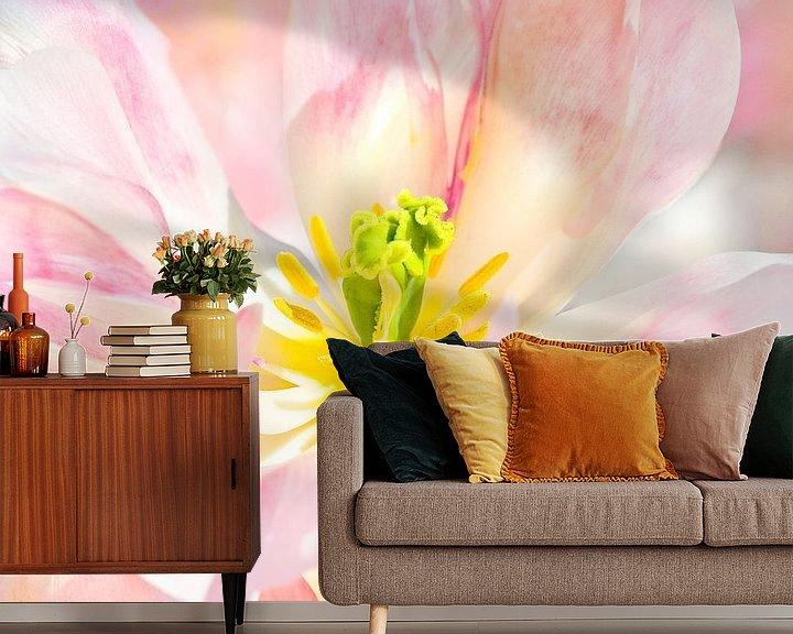 Sfeerimpressie behang: TulipCloseup van Dalex Photography