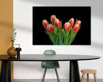 Tulpen uit Amsterdam van Toon van den Einde