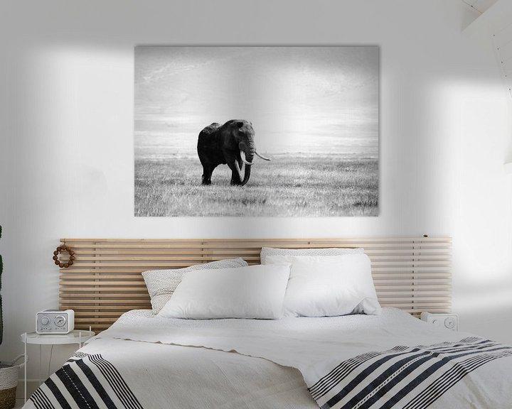 Sfeerimpressie: olifant in de Ngorogoro krater van Jorien Melsen Loos