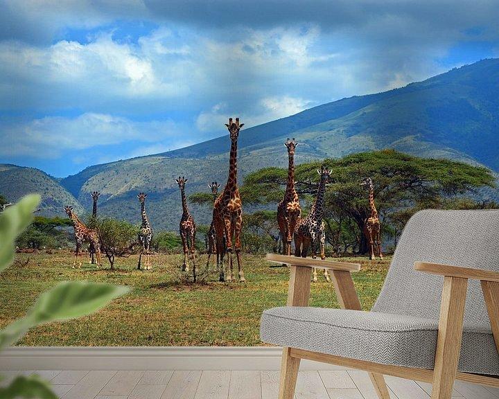 Sfeerimpressie behang: Kudde giraffen op de uitlopers van de Ngorogorokrater van Jorien Melsen Loos