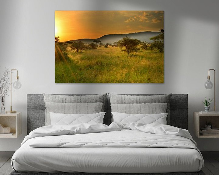 Sfeerimpressie: Zonsondergang in de Serengeti, Afrika van Jorien Melsen Loos