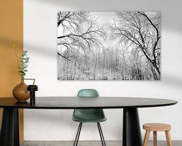 Sneeuwbomen van Alice Sies