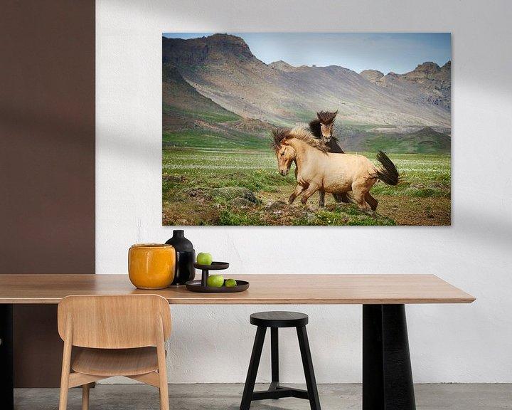Sfeerimpressie: IJslanders van Edwin van Wijk