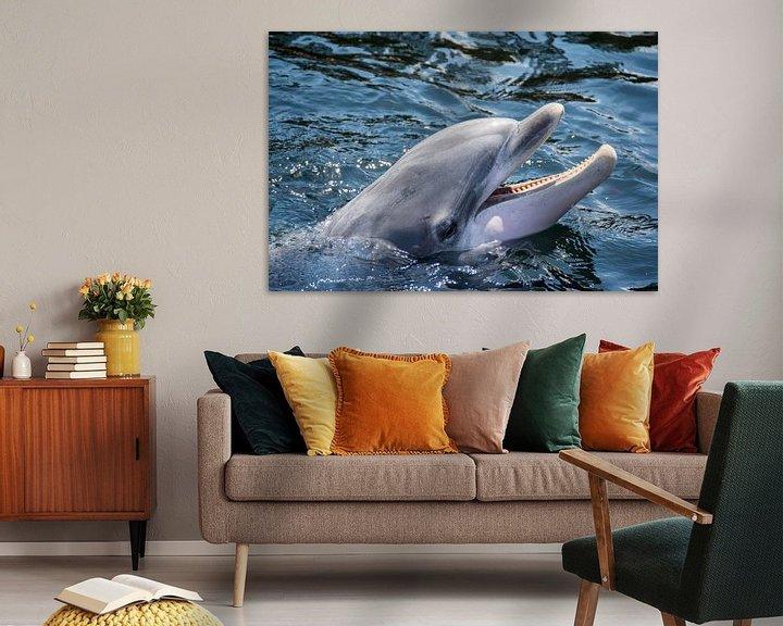 Sfeerimpressie: Dolfijn van Ton de Koning