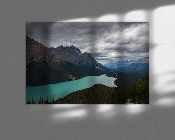 Peyto Lake Banff NP