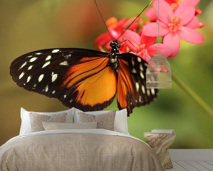 Sfeerimpressie behang: Vlinder hangt aan een bloem (vierkant) van Fotografie Jeronimo