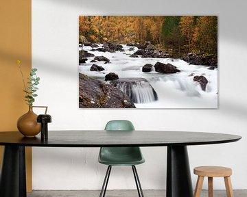 Autumn in Norway van Ellen van Drunen