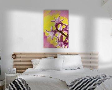 Paarse Hyacint op een geschilderde achtergrond. van Jan Brons