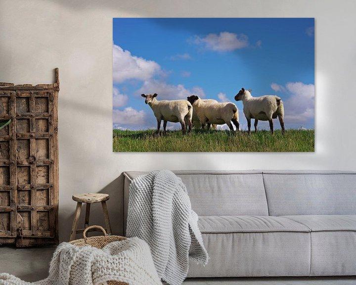 Beispiel: Die Schafe von Angela Dölling