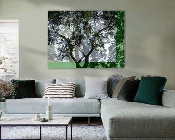 Tree Magic 39 van MoArt (Maurice Heuts)
