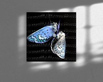 Blaue Stunde von Christine Nöhmeier