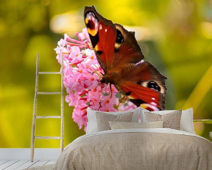 Beispiel fototapete: Dagpauwoog op de vlinderstruik von Lisa-Valerie Gerritsen