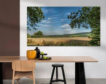 Zuid-Limburg in de zomer van John Kreukniet