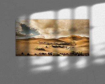 Timanfaya kamelen von Harrie Muis