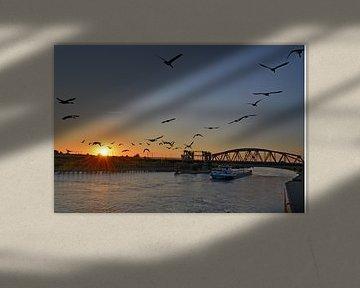 De IJssel bij zonsondergang von Jaimy Buunk