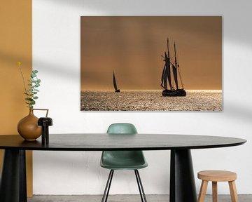 Segelschiffe auf der Hanse Sail von Rico Ködder