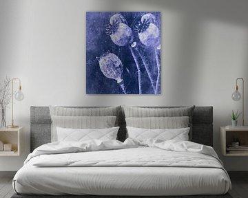 Blue Dreams van Christine Nöhmeier