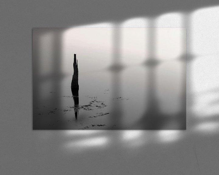 Beispiel: Reflection in schwarz und weiß .. von Miranda van Hulst