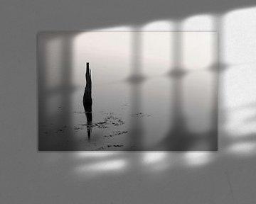 Reflectie in zwart-wit.. van Miranda van Hulst