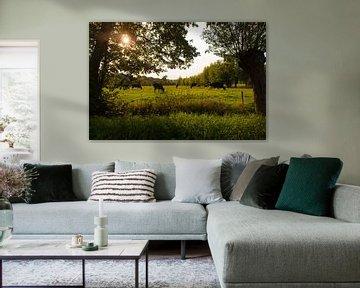 Dutch Landscapes with Cows