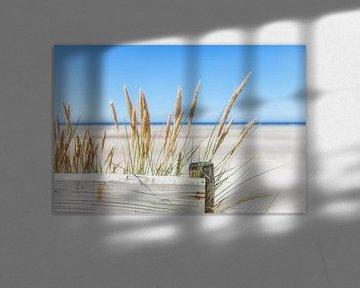 Sommer, Sonne, Meer, Sand und Entspannung von R Smallenbroek