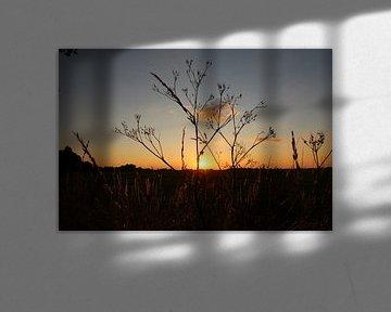 Sonnenuntergang von Fotografie Sybrandy