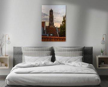 Die Dächer von Utrecht von Thomas van Galen