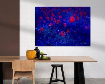 Red in Blue van Vera Laake