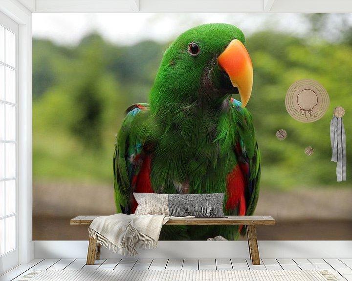 Sfeerimpressie behang: Ara - Papegaai - vogel  van Fotografie Sybrandy