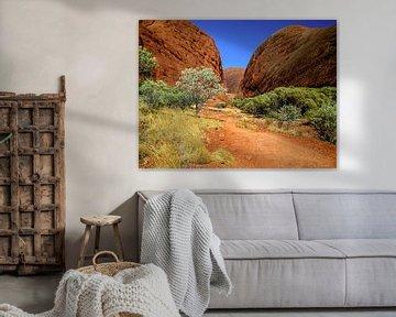 Vallei van de winden, in de outback van Australië.  van Rietje Bulthuis