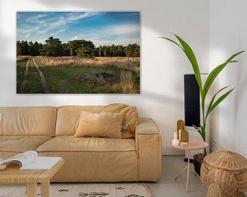 bleoiende heide landschap von Peter van der Wal