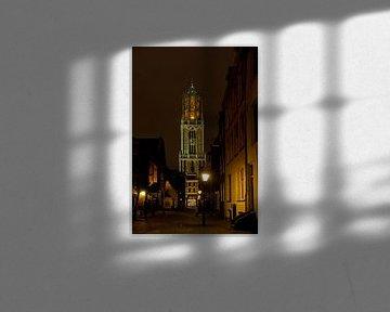 De Dom van Herwin van Rijn