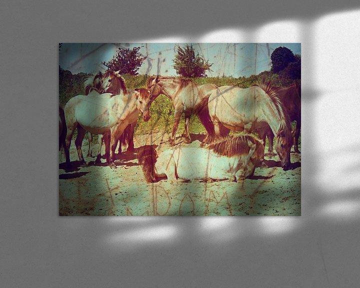 Beispiel: Konik Paarden in De Blauwe Kamer von Wilfried van Dokkumburg