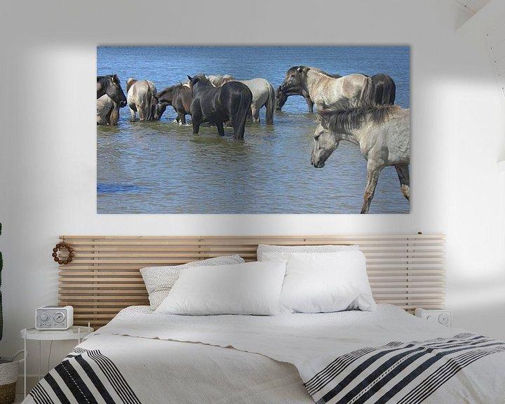 Sfeerimpressie: Konik Paarden in de rivier bij De Blauwe Kamer van Wilfried van Dokkumburg