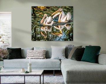 Twee Pelikanen weerspiegeld von Harrie Muis