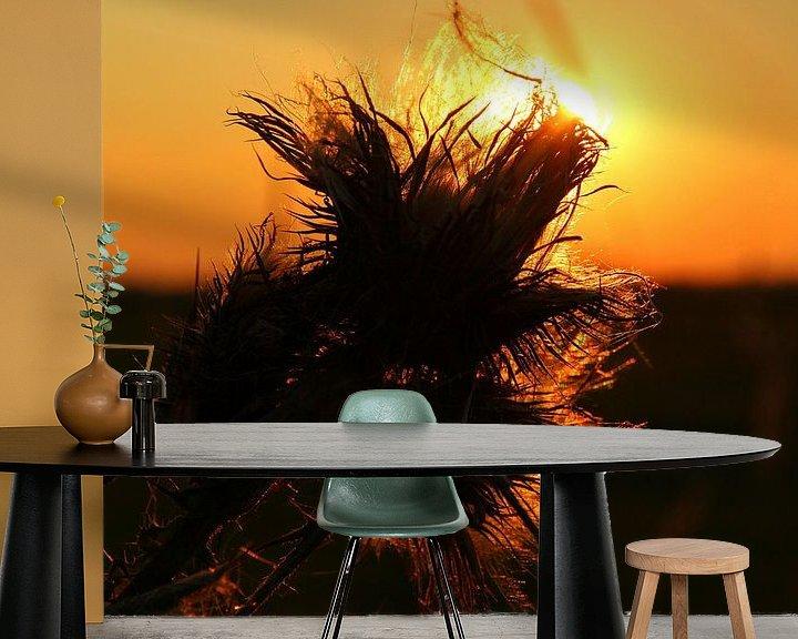Sfeerimpressie behang: Zonsondergang door de bloem van Fotografie Sybrandy
