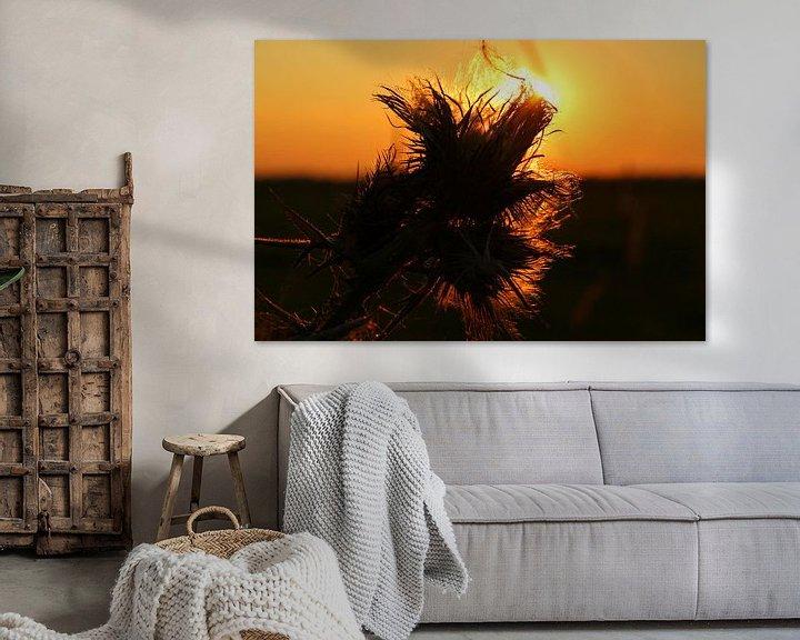 Sfeerimpressie: Zonsondergang door de bloem van Fotografie Sybrandy