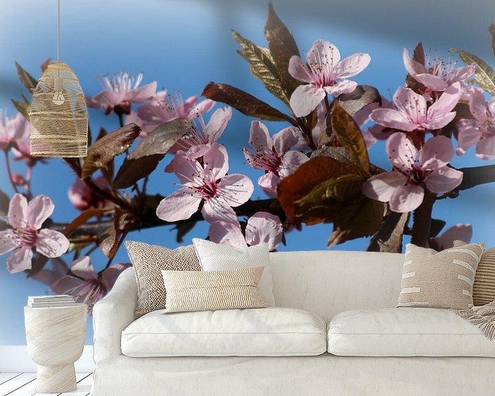 Sfeerimpressie behang: Roze bloesem - Voorjaar van Fotografie Sybrandy