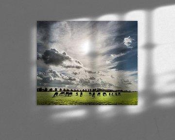 Paarden in het Friese landschap von Harrie Muis