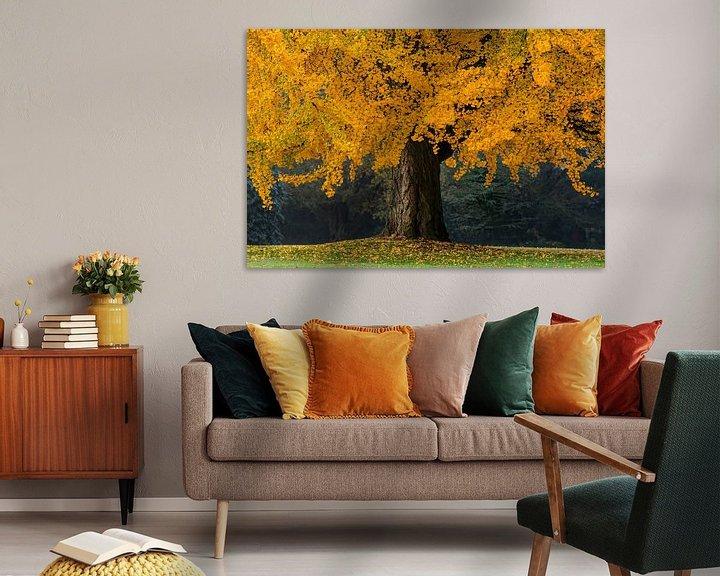 Sfeerimpressie: De oranje Boom van Martin Bergsma