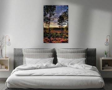 Zonsondergang Landgoed Den Treek Amersfoort von Watze D. de Haan