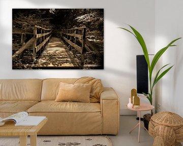 the bridge to.... sur claes touber