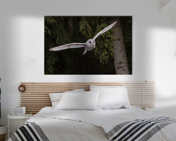 Sfeerimpressie: an owl in flight van claes touber