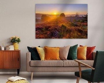 Golden sunrise van Jan Koppelaar