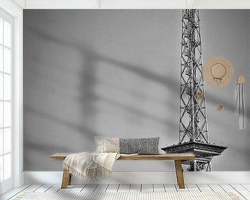 BERLIN Radio Tower | Monochrome van Melanie Viola