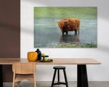 hairy cowbeast rituals van Matthijs Lokers